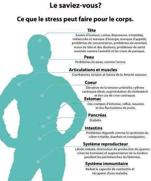 LE STRESS ET LE CORPS
